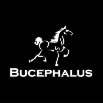 The official logo for Bucephalus Web Development (Bucephalus Development, LC), a strategic-partner and sponsor for VETSI, INC, a 501c3 chartered to help veterans re-assimilate into the modern workforce.